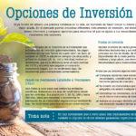 EFI_Mayo_Opciones de inversi+¦n